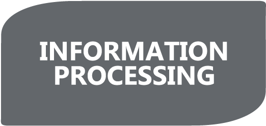 InformationProcessing